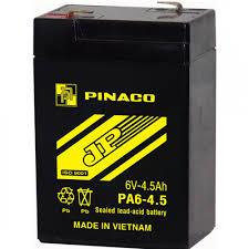 Ắcquy PINACO 4V vợt muỗi